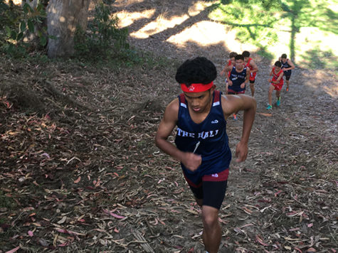 Cross-country looks to make state meet