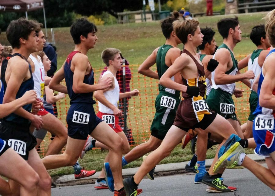 Senior Marcus Williamson (number 391) competes at the CIF State Championship for cross country on Nov. 29. CIF was the last race for senior athletes, who will leave the team after graduating.