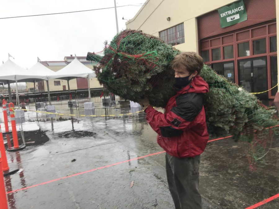 Junior Bo Darwin carries a Christmas tree to a customer's car at the Guardsmen Tree Lot as part of his community service commitment on Dec. 13. Darwin and other Stuart Hall students volunteered at the lot regularly during the holiday season, helping the organization sell trees to raise funds for at-risk youth in the Bay Area.